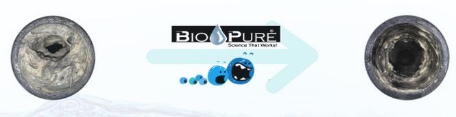Bio Pure Evacuation Cleaner Hughes Dental Repair